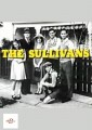 The Sullivans - Volume 22