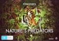 Natures Predators Collectors Set