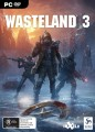 Wasteland 3 (PC Game)