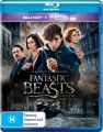 Fantastic Beasts And Where To Find Them (Blu Ray)