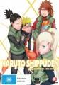 Naruto Shippuden - Collection 22