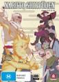Naruto Shippuden - Collection 26