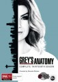 GREY'S ANATOMY - COMPLETE SEASON 13