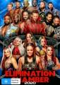 WWE - Elimination Chamber 2020
